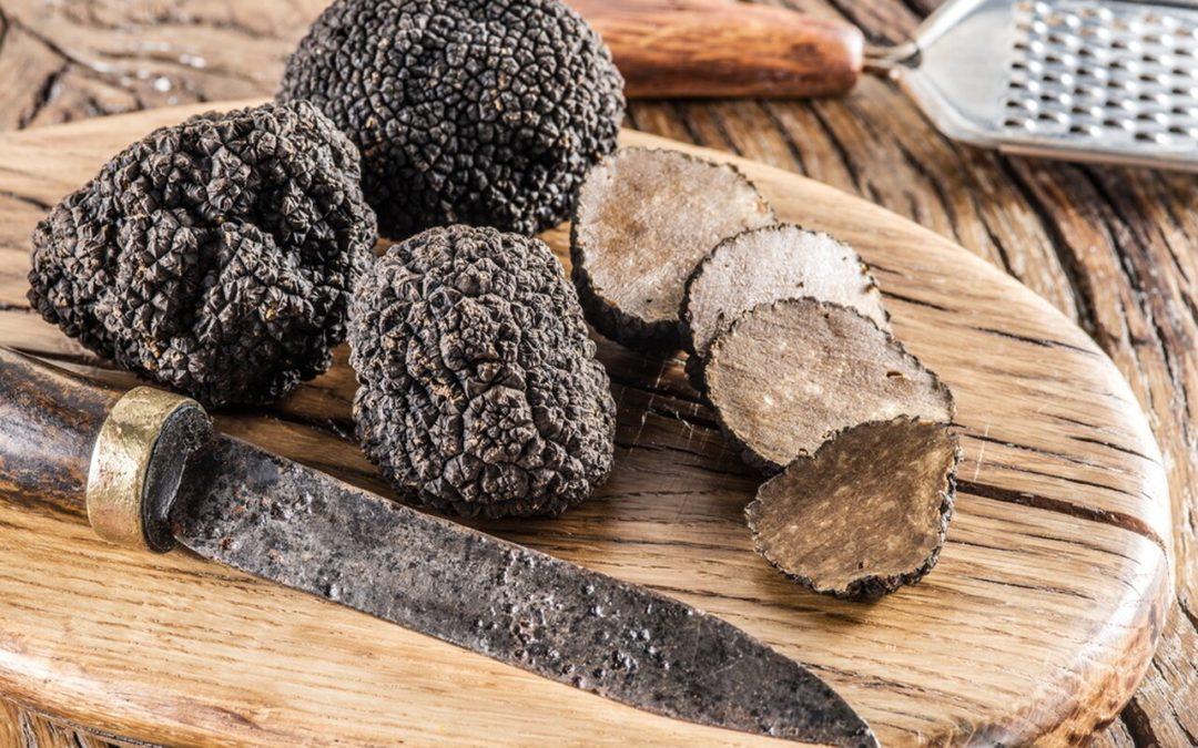 Types of Truffle Mushrooms