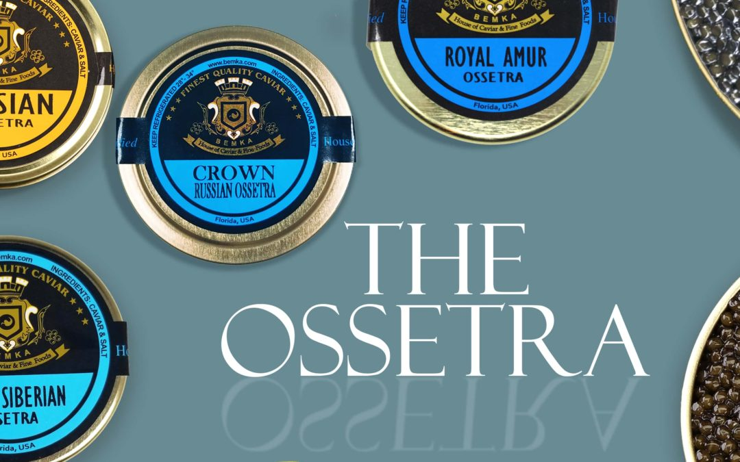 All about Osetra Caviar: Classic and Elegant
