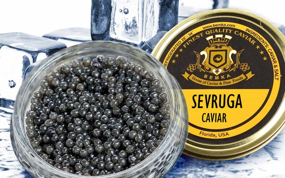 All About Sevruga Caviar