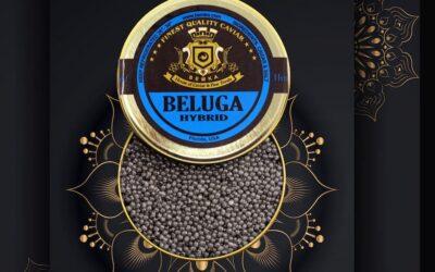 What is Beluga Hybrid Caviar?